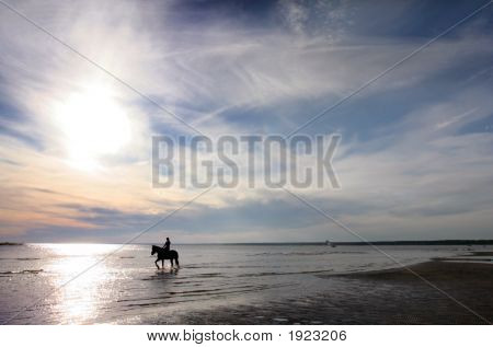 Horse And The Sunset On The Sea