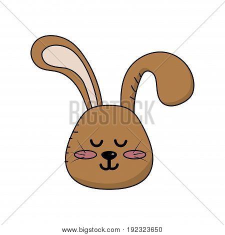 teddy rabbit boy head animal wild vector illustration