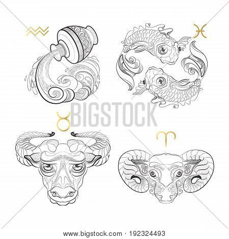 Hand drawn line art of decorative zodiac sign.  Aquarius Pisces Taurus Aries on white background. Horoscope vintage card in doodle style.