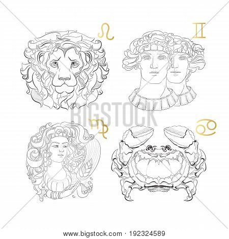 Hand drawn line art of decorative zodiac sign.  Leo Gemini Virgo Cancer on white background. Horoscope vintage card in doodle style.