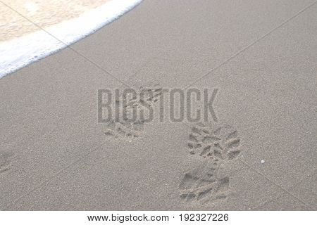 Footprints In The Sand At Sunrise. Beautiful Sandy Tropical Beach With Sea Waves. Footsteps On The S