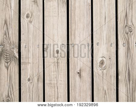 timber wall or wooden wall background with screws