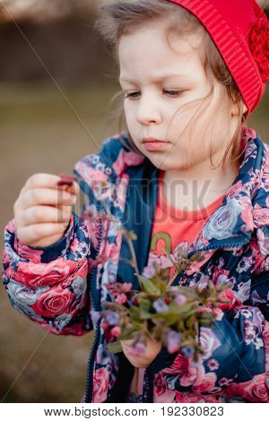 A little girl in a blue jacket with roses and in a red cap is collecting a bouquet of flowers.