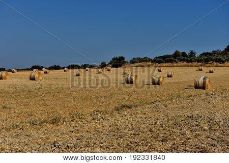 Straw Bales, On Agricultural Farmland Against Blue Sky