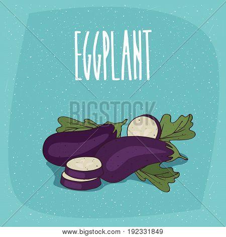 Isolated Vegetable Fruits Aubergine Or Eggplant