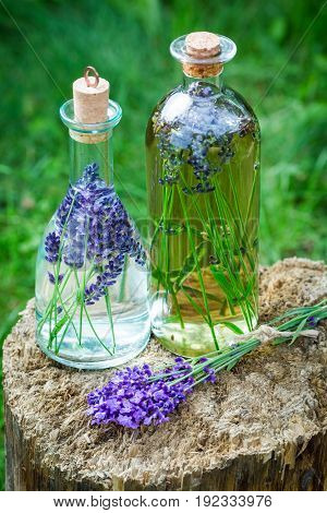 Homemade Healthy Tincture Of Lavender On Old Stump