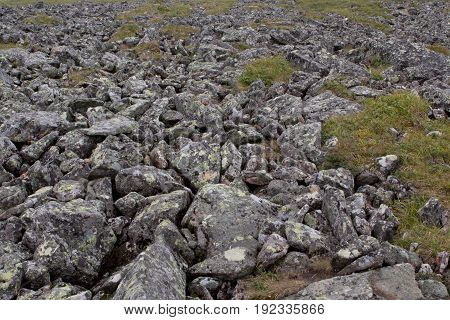 The stone river. Kurumnik - a gray stone placer Northern Urals. Russia. A lot of stones.