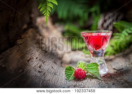 Raspberries Liqueur Made Of Fruits And Alcohol In Summer