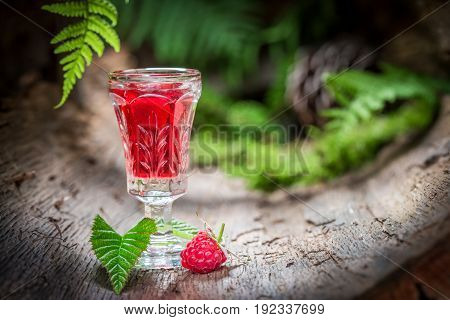 Raspberries Liqueur Made Of Fruits And Alcohol In Forest
