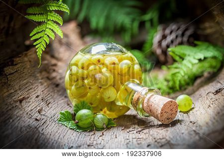 Closeup Of Liqueur Made Of Gooseberries And Alcohol In Forest