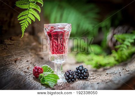 Sweet Liqueur Made Of Alcohol And Blackberries In Forest