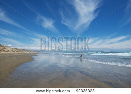 Serenity and tranquility in New Zealand. Woman in the sea background enjoying ocean and nice views in Ninety Mile Beach, North Island New Zealand