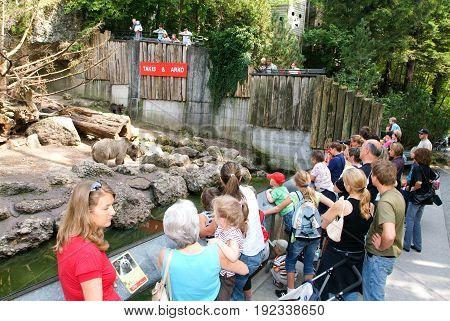 People Looking At Brown Bears In The Zoo Of Goldau