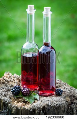 Tasty Liqueur Made Of Alcohol And Blackberries In Summer