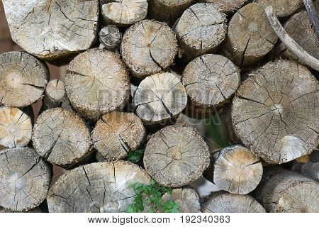 Pile of wood logs ready for winter, dry chopped firewood. wood to burn and warm the cold winter Polluting energies, pollution with smoke a non-renewable energy