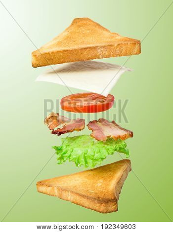 Fresh sandwich with flying ingredients isolated on green background. concept. vertical