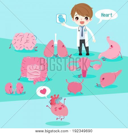 cute cartoon doctor take heart xray with organ on the green background