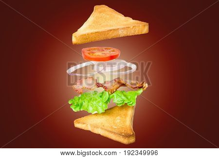 Fresh sandwich with flying ingredients isolated on dark background. concept. vertical