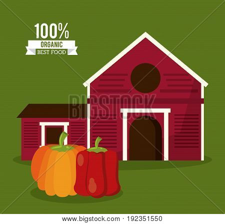 colorful poster of organic best food with farm and chilli and pumpkin vector illustration