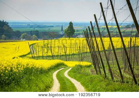 Fields Of Bavaria
