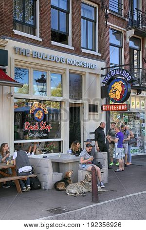 AMSTERDAM, NETHERLANDS - MAY 8, 2016: People sitting at Bulldog coffeeshop on the street in Amsterdam, Netherlands. Bulldog was the first coffeshop and laid the benchmark for the contemporary coffeeshop.