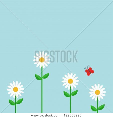 Red butterfly. White daisy chamomile set. Cute growing flower plant. Love card. Camomile icon. Flat design. Blue background. Isolated. Vector illustration