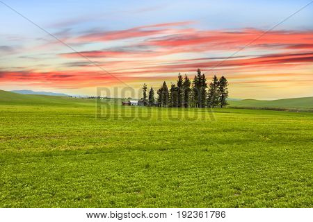 Palouse landscape with colorful sky background