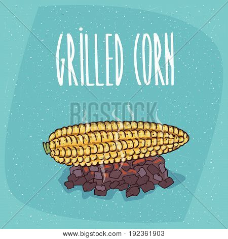 Isolated Grilled Over Charcoal Corn Ears
