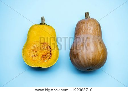 Butternut pumpkin isolated on background