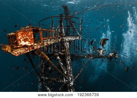 Underwater shot of the ship wreck near the island of Koh Chang, Thailand