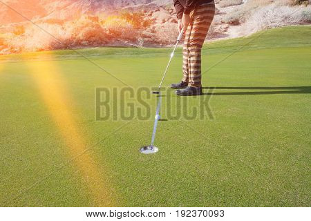 Low section of senior male golfer putting ball into hole at golf course