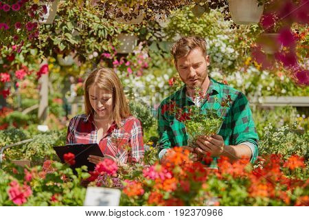 Male gardener standing with potted flower while female coworker doing paperwork in the garden.