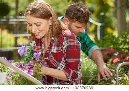Smiling young man and woman gardeners taking care of flowers and plants together in sunny day.