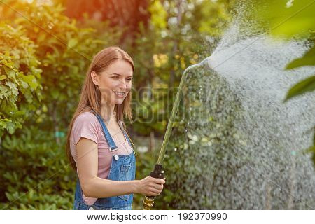 Gardener woman standing and spraying water on flowers with hose in the garden.
