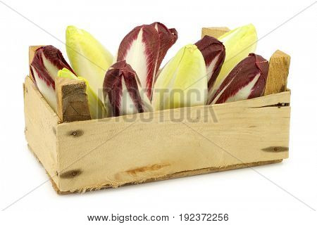 mixed fresh yellow and red chicory  in a wooden crate on a white background