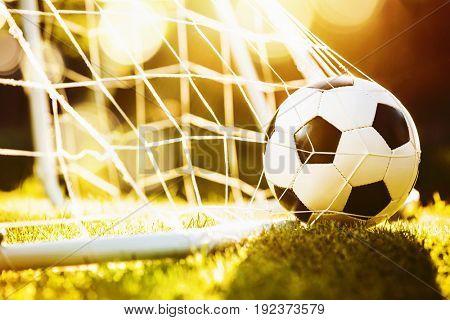 Soccer ball on green grass in sunlight