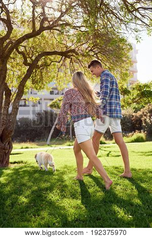New pet owners walking their puppy dog pet on the grass, sunny summer day, healthy lifestyle