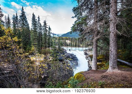 Clear autumn evening in Canada. The bubbling waterfall of Athabasca among the forest of Jasper Park. Cold blue water at sunset. The concept of extreme and ecological tourism