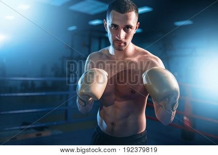 Portrait of muscular boxer in black gloves