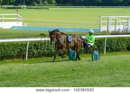 WROCLAW, POLAND - JUNE 18: Finish the race for 8-year-old and older trotting French (sulki) on 18 June 2017 in Wroclaw, Poland. This is an annual race on the Partynice track open to the public.