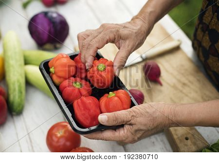 Hands pick a sweet bell pepper from a container