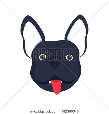 French bulldog dog head dog face illustration .Beautiful french bulldog puppy black fawn dog looks adorable picture
