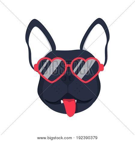 French bulldog dog head dog face illustration .Beautiful french bulldog puppy black fawn dog looks out the glasses. Dog in glasses adorable picture