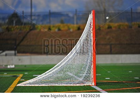 Lacrosse ball going in goal