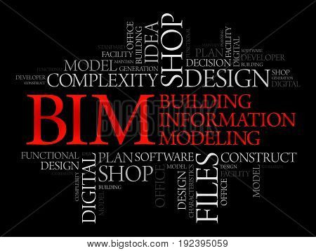 Bim Word Cloud, Business Concept