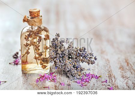 Herb water flower lavender water bottle white background