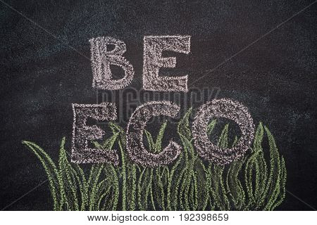 Be eco writing with green grassl drawn with chalk on blackboard