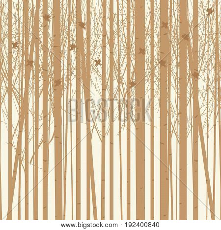 Seamless vector texture with a picture of the forest of trees with birds. Birch forest vector background. Birch grove pattern. Background of trees
