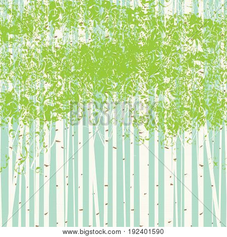 Vector seamless texture with the image of the birch trees on blue sky background. Spring birch forest vector background. The picture birch grove.