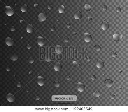 Realistic Water Drop. Vector Illustration. Pure Water Drops Collection.